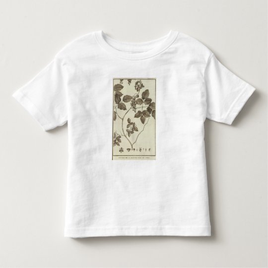 Chile 3 toddler t-shirt