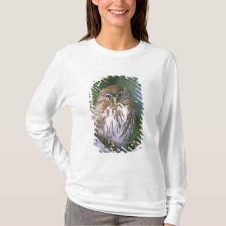 Chile, Aysen. Juvenile Autral Pygmy Owl T-Shirt