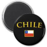 Chile de oro imanes