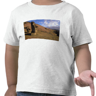 Chile, Easter Island. Hillside with Moai Shirts