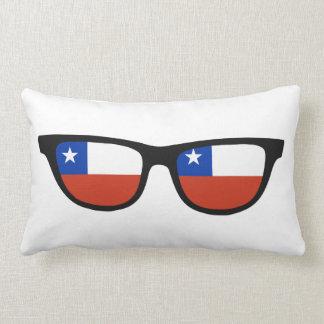 Chile Shades custom throw pillows