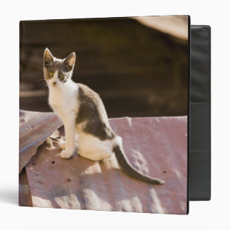 Chile, Valparaiso. Cat on a roof Vinyl Binders