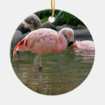 Chilean Flamingo Ceramic Ornament