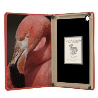 Chilean Flamingo, Phoenicopterus chilensis iPad Mini Cover