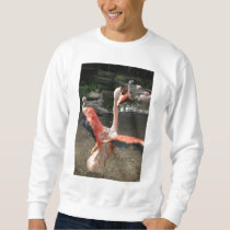 Chilean Flamingo Sweatshirt
