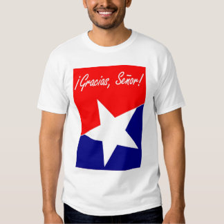 Chilean Miners Gracias, Señor! Psalm 95:4 ENGLISH T Shirts