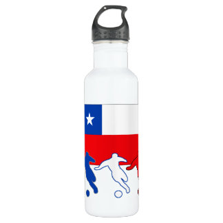 Chilean Soccer Players Stainless Steel Water Bottle