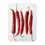 Chili Peppers in a Row Magnets