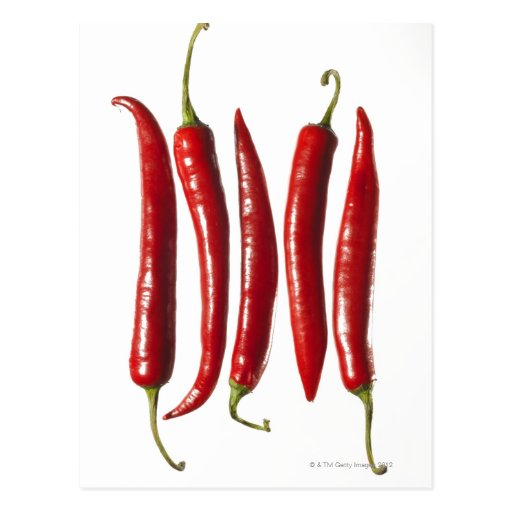 Chili Peppers in a Row Post Cards