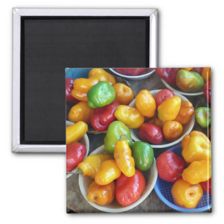CHILIES 2 INCH SQUARE MAGNET