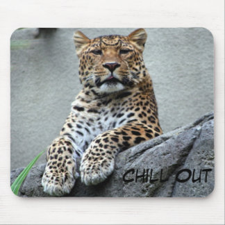 Chill Out Kitty Mouse Pad