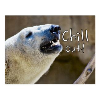 Chill out! polar bear postcard