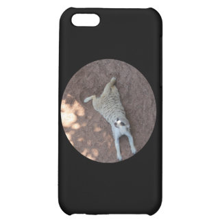 Chilled Meerkat Case For iPhone 5C