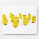 Chillin del imán del polluelo con mi foto divertid alfombrillas de raton