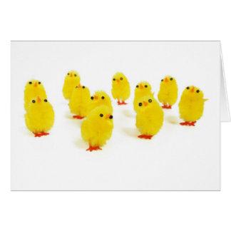 Chillin del imán del polluelo con mi foto divertid tarjeta de felicitación