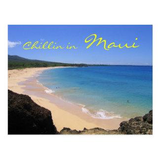 Chillin en la postal de Maui