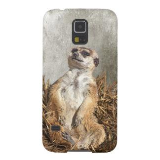 Chilling Meerkat Galaxy S5 Case
