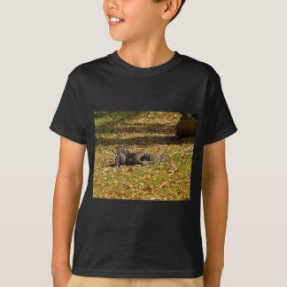 Chilling out at Zoo Atlanta T-Shirt