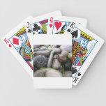 Chillón limpie baraja de cartas