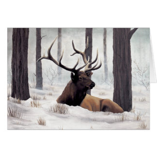 Chilly - Customized Greeting Card