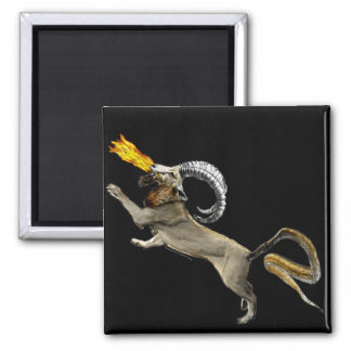 Chimera 2 Inch Square Magnet