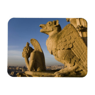 Chimera on facade of Notre Dame Cathedral, Rectangular Photo Magnet