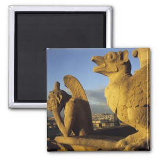 Chimera, re Dame Cathedral, Paris, France 2 Inch Square Magnet