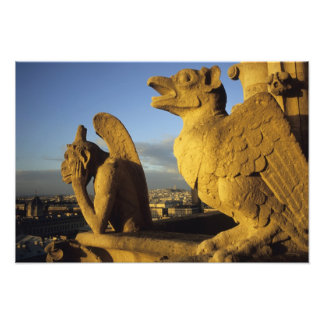 Chimera re Dame Cathedral Paris France Art Photo
