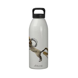 Chimera Reusable Water Bottle