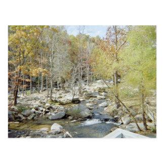 Chimney Rock creek Post Cards