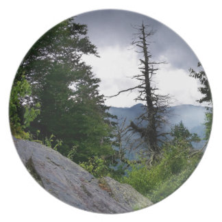 Chimney Tops great smoky mountains Plate