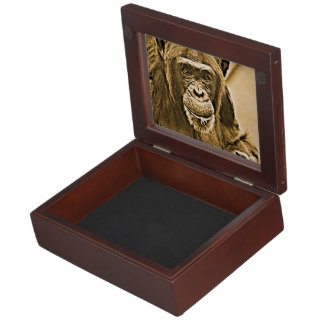 Chimp 216 memory box