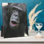 Chimp Chat Plaque