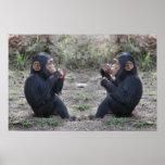Chimp Chimp Poster