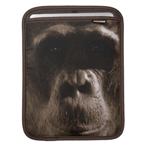 Chimp iPad Sleeve