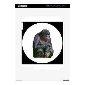 """Chimp"" iPad 3 Decal"