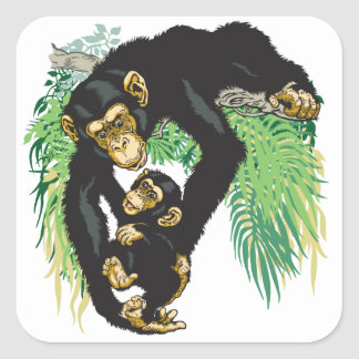 chimp with baby square sticker