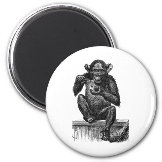 Chimp with Soup Magnet