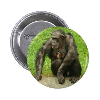 Chimpancé con el bebé - botón pin redondo de 2 pulgadas