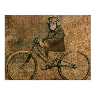 Chimpancé del vintage que monta una bicicleta postal