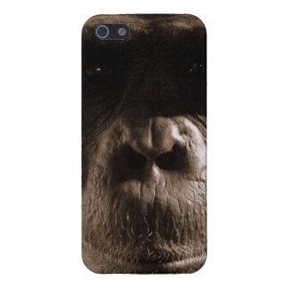 Chimpancé iPhone 5 Protectores