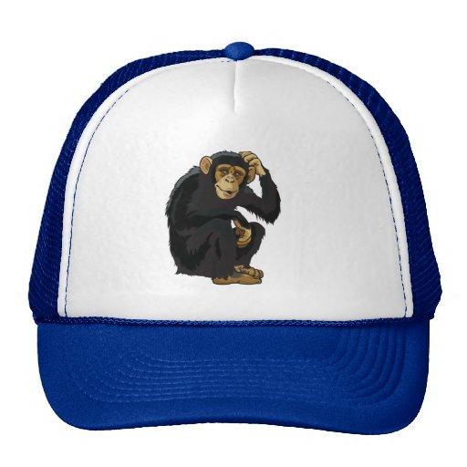 chimpancé gorros bordados