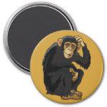 chimpancé imanes