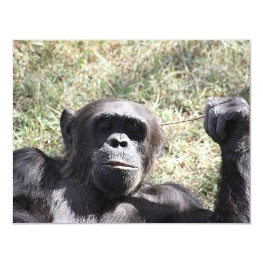 """Chimpancé Invitación 4.25"""" X 5.5"""""""