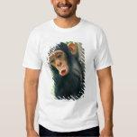 Chimpancé joven (trogloditas de la cacerola) playera