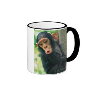 Chimpancé joven (trogloditas de la cacerola) taza a dos colores