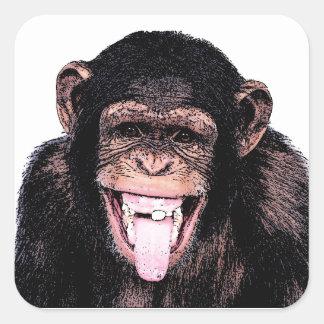 Chimpancé Pegatina Cuadrada