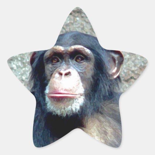 Chimpancé Pegatina En Forma De Estrella