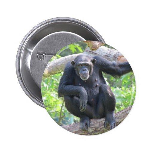 chimpancé pin redondo 5 cm