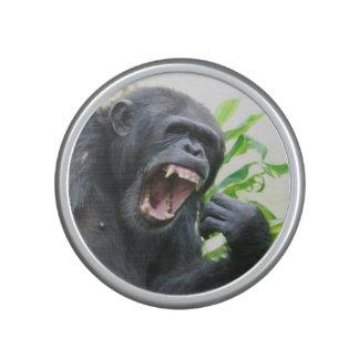 Chimpancé que descubre los dientes altavoz